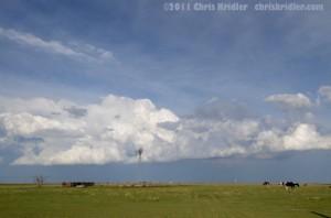 Dying cumulus clouds